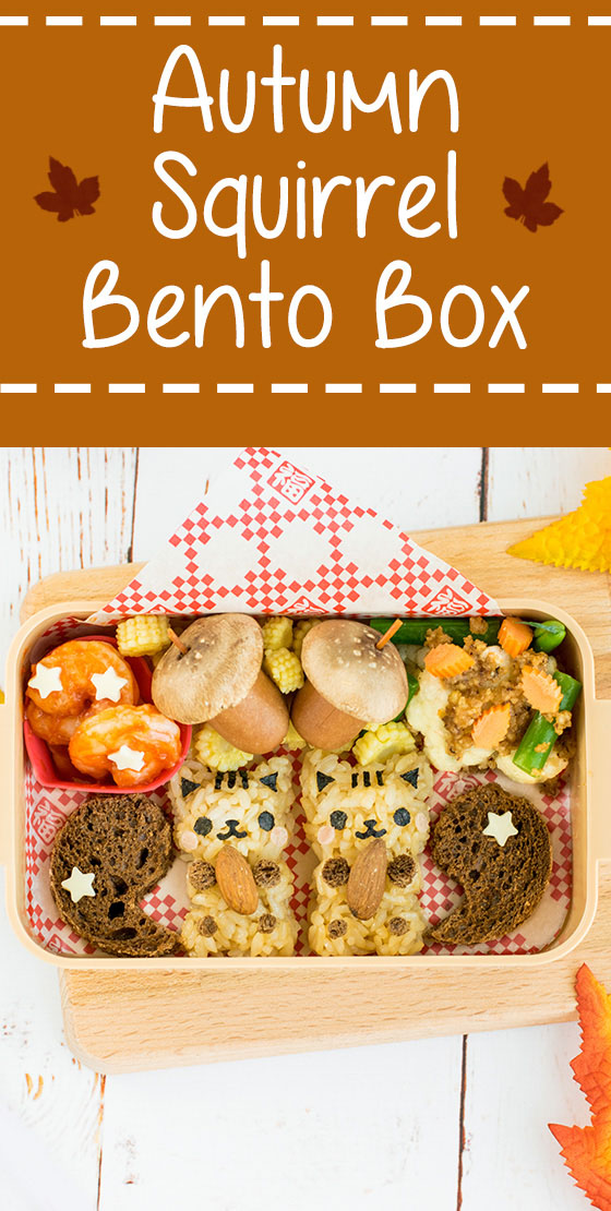Autumn Squirrel Onigiri Bento Box - Get into the fall spirit by learning how to make these irresistibly cute squirrel onigiri! They make the perfect addition to any fall themed bento or lunch box. Step-by-step instructions + video tutorial will help you recreate them with ease! | loveatfirstbento.com