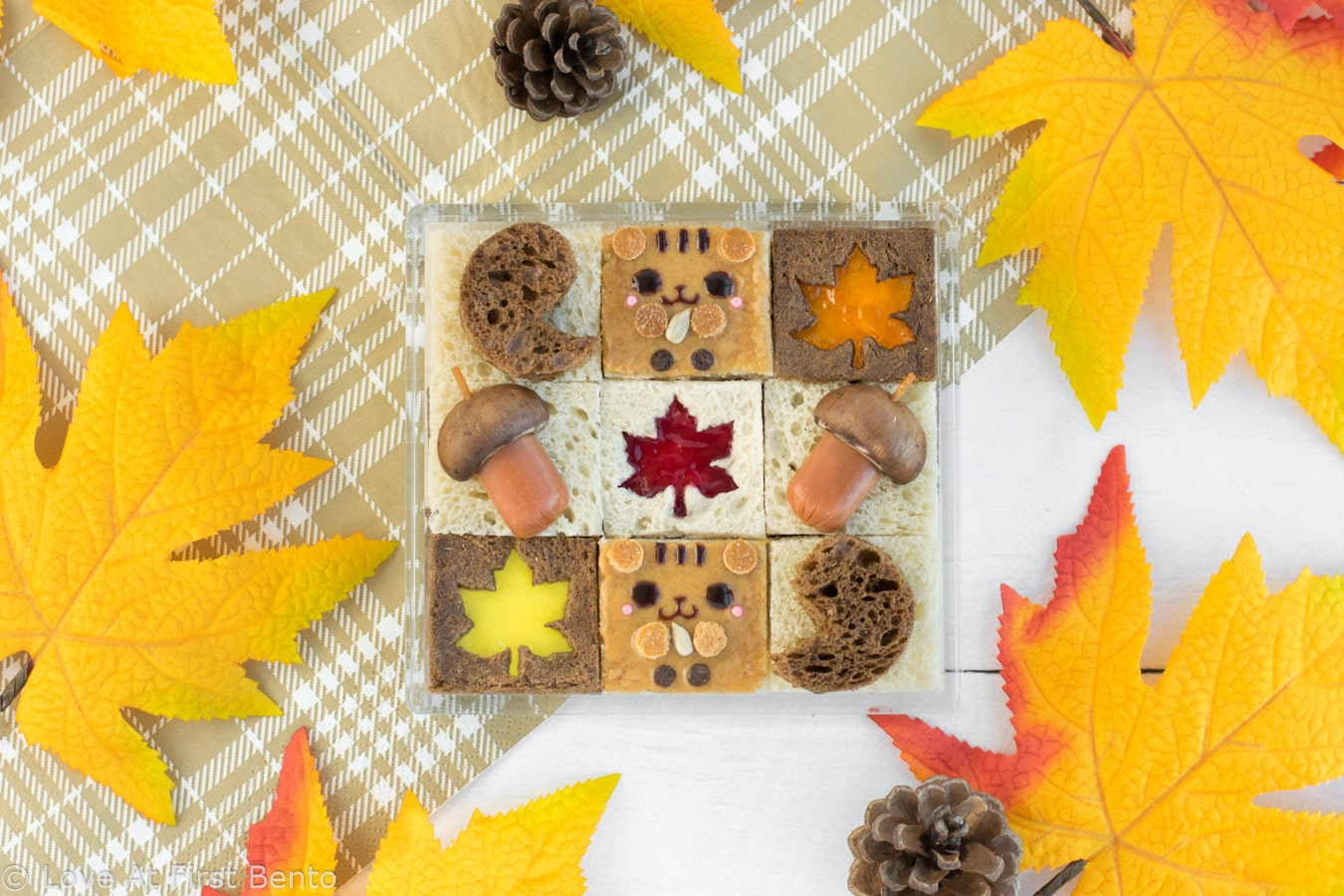 Autumn Squirrel Mosaic Sandwich Bento - Kids & adults will FLIP over this adorable fall bento box! Made entirely out of sandwiches that use simple, pantry-staple ingredients, even the pickiest of eaters will adore this fun and yummy kid-friendly lunch! Get the recipe at: loveatfirstbento.com